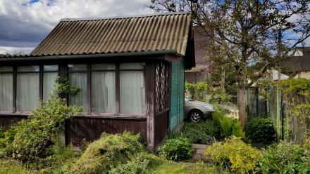 Продам участок с небольшим домиком для хорошего летнего/осеннего времяпрепровожд. Хотяновка, Киевская область. фото 6
