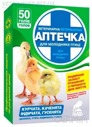 Надежная защита птенцов (цыплята, утята, индюшата, гусята) с первого дня жизни.. Одесса, Одесская область. фото 1