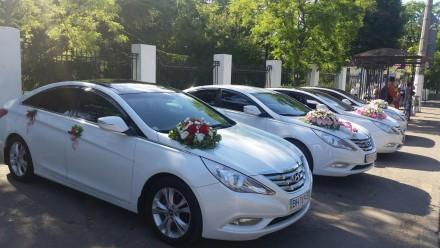 Уважаемые молодожены, именно для вас, предоставляется белоснежный автомобиль биз. Одесса, Одесская область. фото 7
