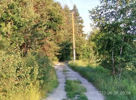 Продам  земельный участок 5-сот под садоводство с.Берёзовка,Сухой ,ровный,свет р. Березовка, Житомирская область. фото 3