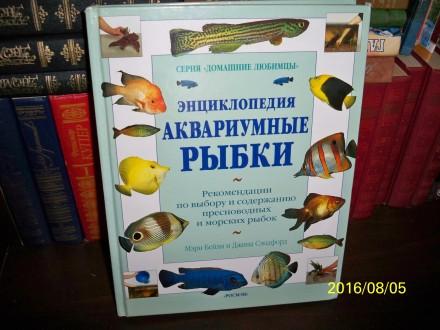 Аквариумные рыбки.Энциклопедия.. Кривой Рог. фото 1
