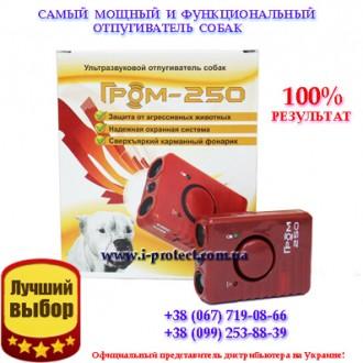 Универсальный отпугиватель собак Гром 250. Дніпро. фото 1