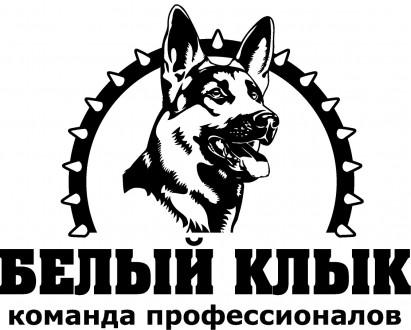 Дрессировка собак, гостиница для животных. Буча. фото 1