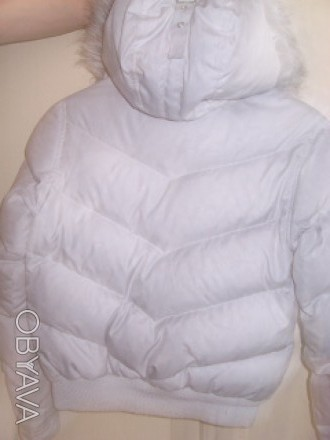 Куртка Mckenzie, оригинал. Куртка с капюшоном. Наполнитель- Пух-55%,перо45%. Низ. Ирпень, Киевская область. фото 4