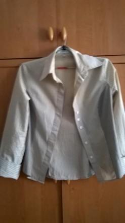 Базовая рубашка с длинным рукавом. Кропивницкий. фото 1