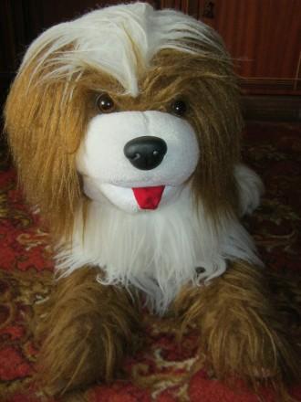 Большая игрушка-собака в отличном состоянии.. Николаев. фото 1