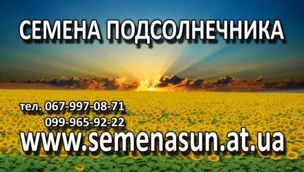 ПРОДАМ семена подсолнечника,кукурузы Pioneer Syngenta Monsanto LG от 120$. Каменское. фото 1