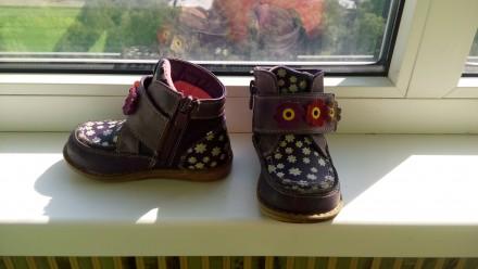 Ботинки кожаные. Чернігів. фото 1