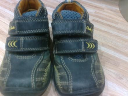 фирменные ботиночки Clarks. Сумы. фото 1