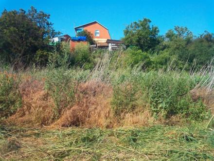 Покос травы любой сложности в Мариуполе. Мариуполь. фото 1
