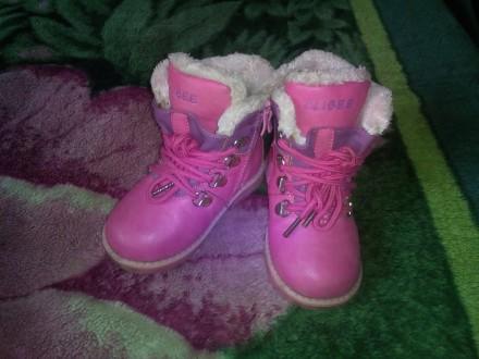 Зимние сапожки для девочки. Запорожье. фото 1