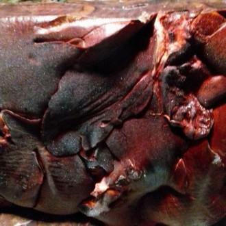Продам оптом печінку свинячу заморожену поліблок 20кг Німетчина Тьонис! Доставка. Киев, Киевская область. фото 4