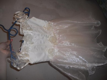 Платье. Житомир. фото 1