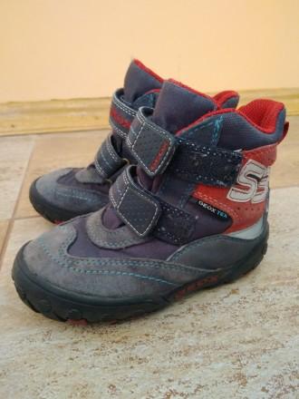 детские ботинки GEOX р.25. Киев. фото 1