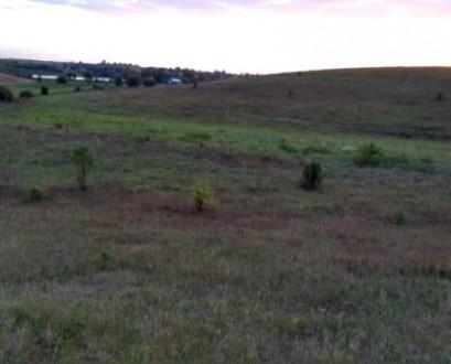 Продам земельну ділянку в Городищі. 0.1 га. Приватизована. Поруч житлового масив. Городище, Ровненская область. фото 2