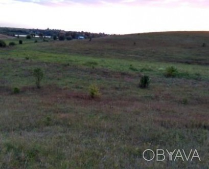 Продам земельну ділянку в Городищі. 0.1 га. Приватизована. Поруч житлового масив. Городище, Ровненская область. фото 1