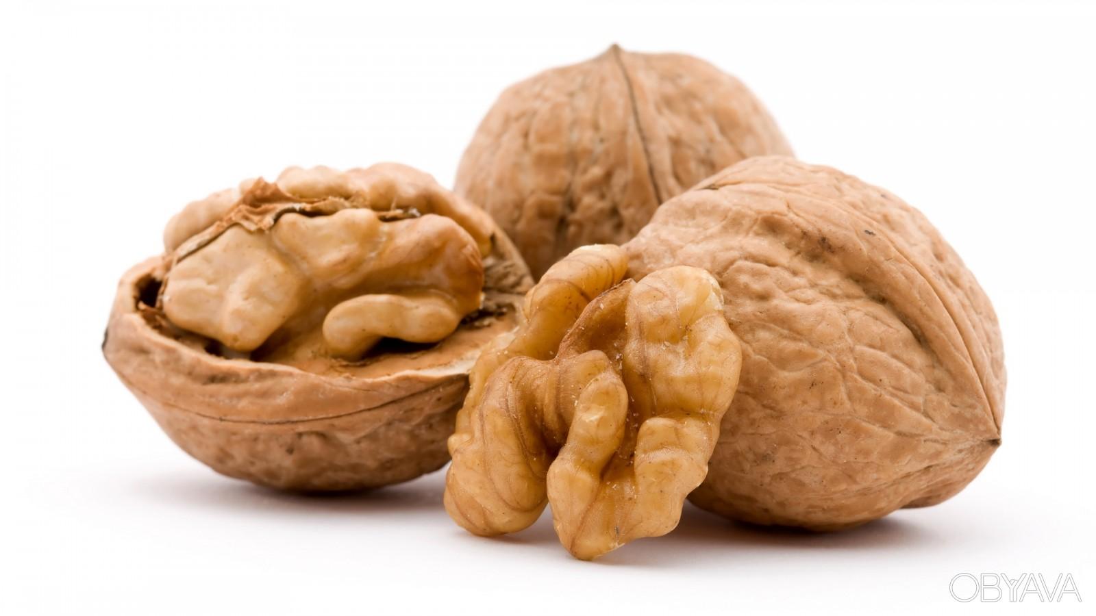 или белые ядра грецких орехов Термобелье мужское