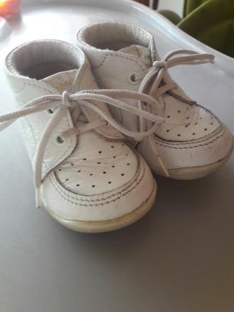 Кожаные туфли. Чоп. фото 1