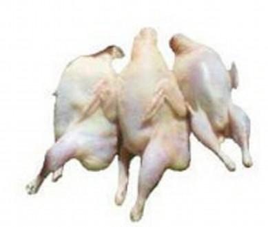 Продам тушки перепелов, белого Техасского - бройлера.  Вес тушки 250 - 300 грамм. Новая Одесса, Николаевская область. фото 4