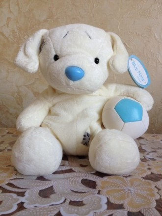 my Blue Nose friends друзья мишки Тедди. Ровно. фото 1