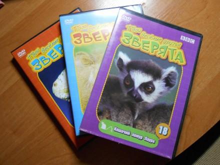DVD коллекция о животных.