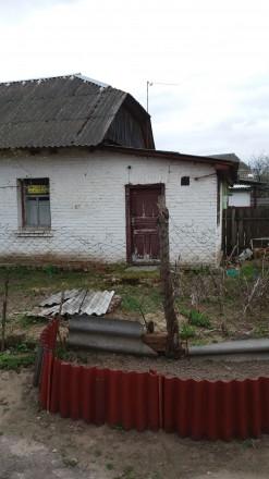 1комн.квартира в с.Киселевка,дерево в кирпиче,комната,кухня,прихожая с кладовой,. Киселевка, Черниговская область. фото 4