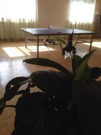 Продам пол дома в районе Рабочей с отдельным заездом и двориком, есть маленький . Шляховка, Дніпро, Дніпропетровська область. фото 3