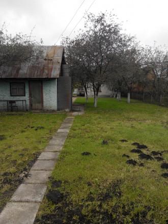 Продам дачу в Станішовці: 9 соток приватизованої землі, 7-10хв. від КПП, ділянка. Станишівка, Житомирська область. фото 5