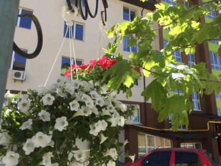 БЕЗ КОМИССИИ! ОТ ХОЗЯИНА!  СРОЧНО!!! Продается просторная 1-комнатная квартира. Софіївська Борщагівка, Київська область. фото 8