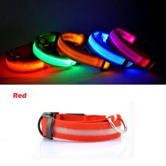 Светящийся ошейник для собак разные цвета. Запорожье. фото 1