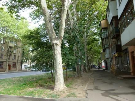 Предлагаем купить 2-х комнатную квартиру по улице Сегедская. Квартира требует ре. Малий Фонтан, Одеса, Одеська область. фото 6