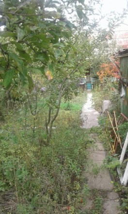 Дом, Толбухина/Ванцетти, 65 кв.м., на участке 5,5 соток, постройки 80 г.г., 2 ко. Киевский, Одесса, Одесская область. фото 5