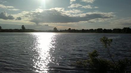 Днепровское, 17 сот, отличный участок возле воды!. Чернигов. фото 1