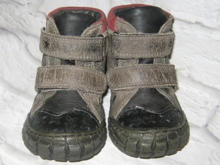 Кожаные брендовые ботиночки Perche No? (Италия), размер 21 (13,5 см). Черноморск (Ильичевск). фото 1