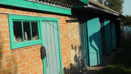 У зв'язку з переїздом до дітей продається садиба в с. Вікторія, Пирятинського ра. Вікторія, Полтавская область. фото 6