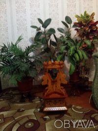 Продам подставку для цветов. Бердичів. фото 1