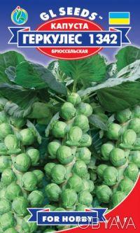 Широкий ассортимент семян овощей,цветов,пряностей. Обухов. фото 1