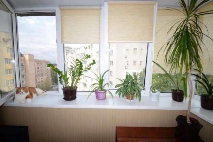 Продается однокомнатная квартира напротив Юр.Академии. Кирпичный дом 1992 года. . Середній Фонтан, Одеса, Одеська область. фото 5