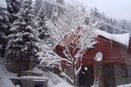 Здається будиночок з дерева,недалеко від санаторія Верховина і мінеральної води . Київ, Київська область. фото 5