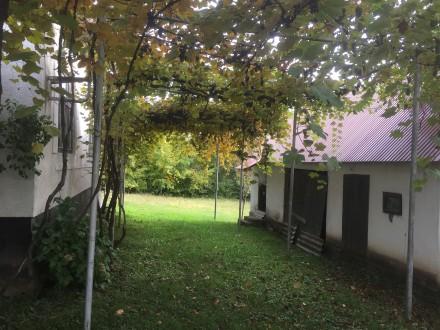 Терміново продається житловий будинок з надвірними спорудами, що розташований в . Ільниця, Закарпатська область. фото 7