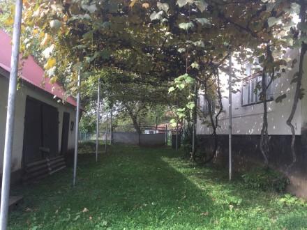 Терміново продається житловий будинок з надвірними спорудами, що розташований в . Ільниця, Закарпатська область. фото 4