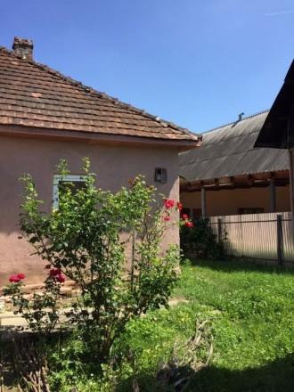 Продається житловий будинок м.Свалява вул.І.Франка 84, (від будинку до центру мі. Свалява, Свалява, Закарпатська область. фото 5