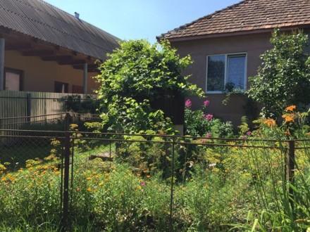Продається житловий будинок м.Свалява вул.І.Франка 84, (від будинку до центру мі. Свалява, Свалява, Закарпатська область. фото 2