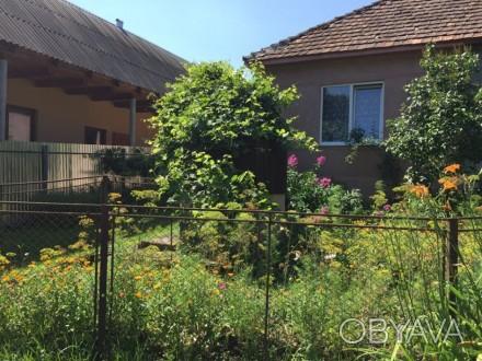 Продається житловий будинок м.Свалява вул.І.Франка 84, (від будинку до центру мі. Свалява, Свалява, Закарпатська область. фото 1