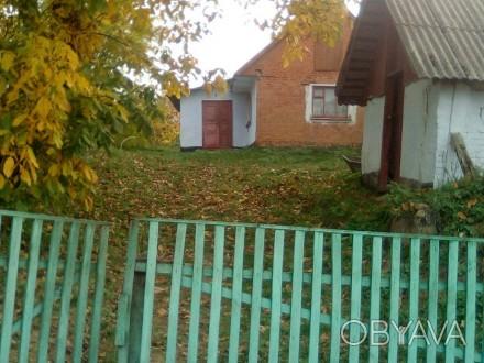 Продам дом в центре села, глинобитный. Есть летняя кухня, сарай, погреб. Рядом г. Стуфчинці, Хмельницька область. фото 1