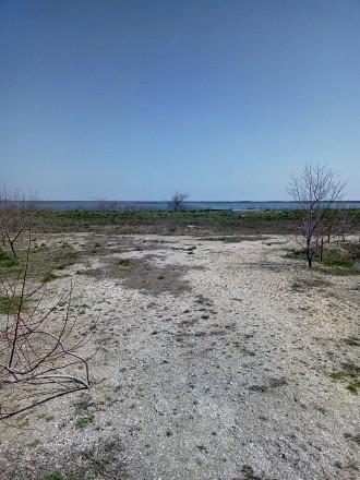 Продам 18соток земли ближние Макорты на берегу солевого лиманна.есть сважина хор. Колония, Бердянськ, Запорізька область. фото 6