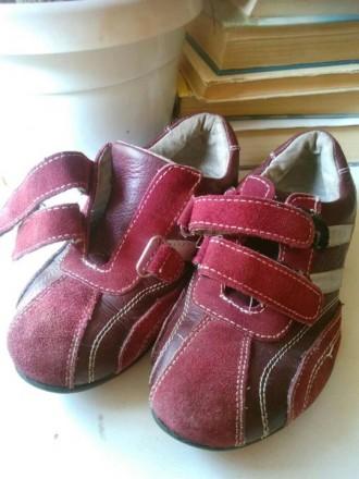Продаю кожаные кроссовки для девочки, б/у. Николаев. фото 1
