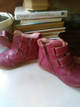 Продаю кожаные ботиночки для девочки, б/у. Миколаїв. фото 1