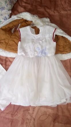 Плаття +шуба. Устинівка. фото 1