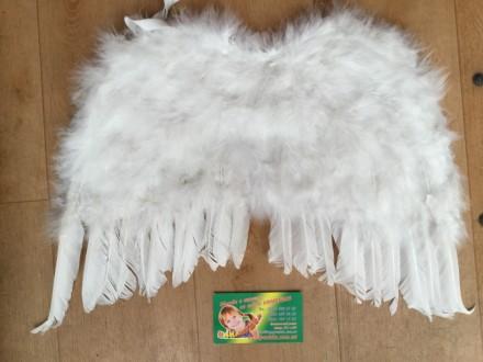 Крылья ангела/ Крила янгола. Чернигов. фото 1